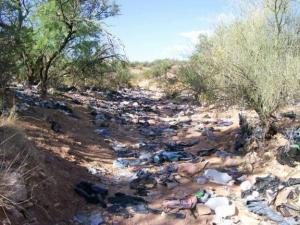Illegal immigration trashing our country